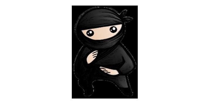 Photo of System Ninja Gratis Ultima Versión