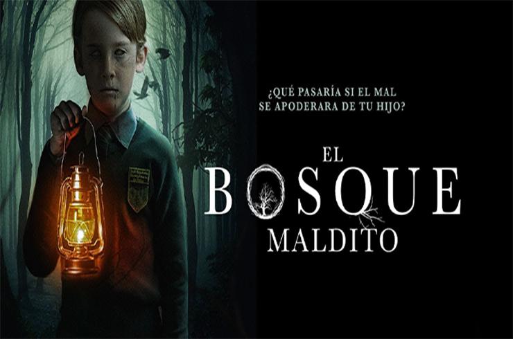 Photo of El Bosque Maldito (2019) HD 720p y 1080p Latino